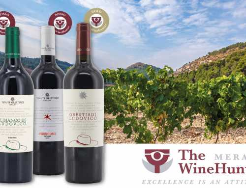 The Wine Hunter Award: quattro medaglie a Tenute Orestiadi